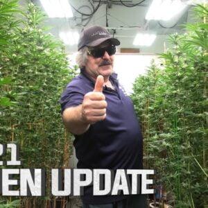 Remo's Garden Update (Day 21)