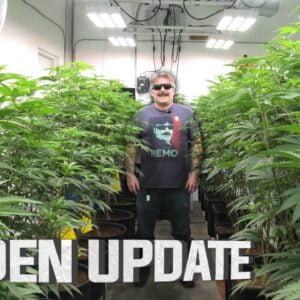 Remo's Garden Update (Day 7)