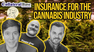 Cannabis and Hemp Industry Insurance | Cannabis Risk Management for Dispensaries and Cultivators