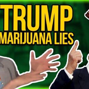 Trump Marijuana Lies & Coronavirus Politics - Dr. Fauci as the new Dr. Woodward | cannabis satire