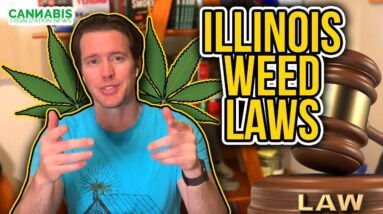Illinois Weed Laws - Review of Cannabis Regulation & Tax Act | Chicago Marijuana legalization