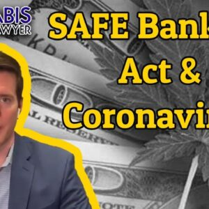 SAFE Banking Act Back to Senate - Coronavirus & Safe Banking Act - CARES 2.0