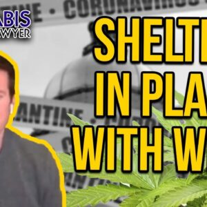 Shelter in Place with Weed - Dispensaries Open During Quarantine
