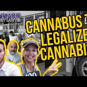 Sometimes You Need a Bus to Legalize Cannabis