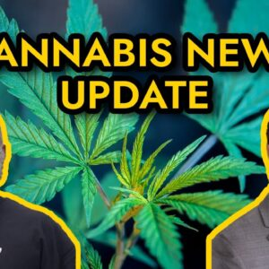 Cannabis News - Mississippi to vote on medical marijuana, Navy bans CBD products, and more