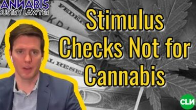 Stimulus Checks Coming - But NOT for Cannabis