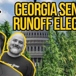Georgia Senate Runoff Election Could Determine the Future of Cannabis Legalization