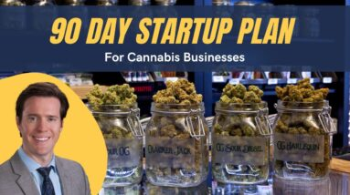The First 90 Days of Starting a Cannabis Business