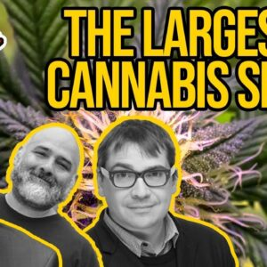The Largest Cannabis SPAC In History