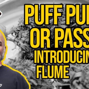 This Pipe Can Fit In Your BONG? | Introducing the Flume