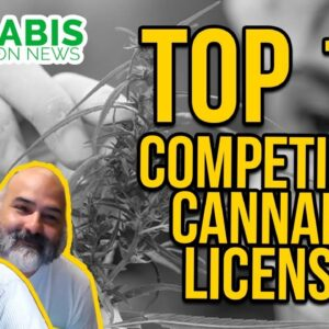 Top 10 Things to Know About Competitive Cannabis Licenses