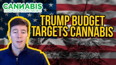 Trump Budget Targets Cannabis / Medical Marijuana Patients