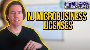 New Jersey Microbusiness Licenses | What is a microbusiness & how much does it cost or make