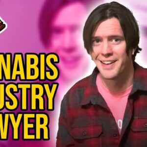 Visit us at Cannabis Industry Lawyer dot Com