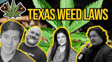 Texas Marijuana Laws | Is Weed Legal in Texas? | Weed in Texas with Texas NORML and DFW NORML