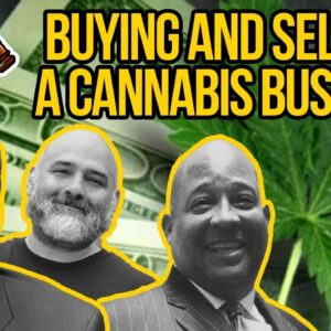 Buying and Selling a Cannabis Business - Licenses, Mergers, and Acquisitions