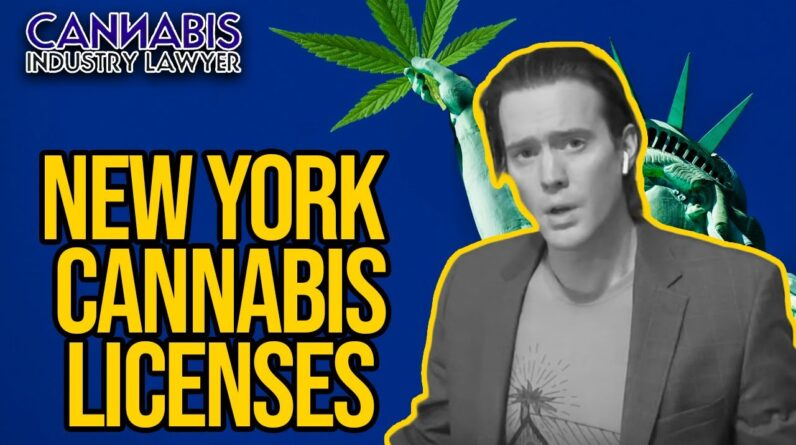 New York Cannabis License | MRTA Explained for NY Cannabis Business Licenses