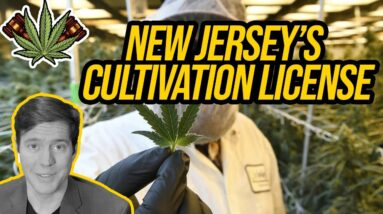 New Jersey Cannabis Cultivation License | Getting a Cannabis License in New Jersey