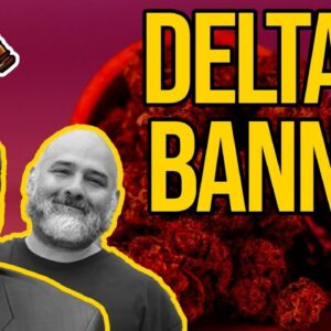 11 States Ban Delta-8 | How Long Will Delta-8 Be Legal?