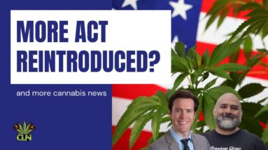 MORE Act to be Reintroduced