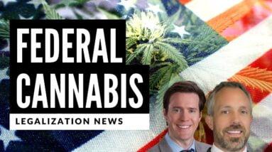 VA Doctors Could Recommend Medical Marijuana Under MORE Act