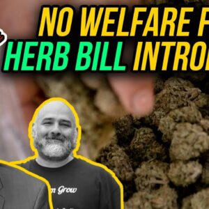 These Two Lawmakers Want to Block Low-Income People From Buying Herb