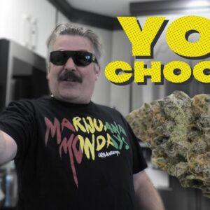 YOU CHOOSE the buds for Marijuana Monday!