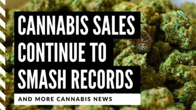 Cannabis Legalization News: 4 States Report Record Breaking Sales