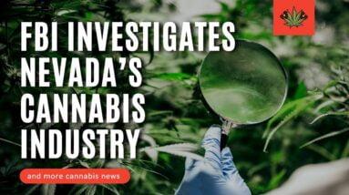 FBI Investigates Nevada's Cannabis Licensing Process