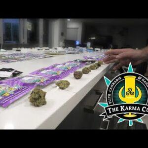 Karma Cup Judges Kit 2021