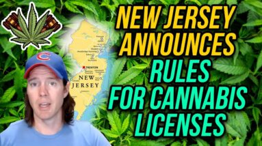 New Jersey Announces Rules for Cannabis Licenses