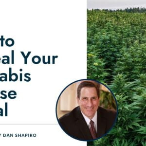 How to Appeal Your Cannabis License Denial | How to Sue to Geta Cannabis License | Cannabis lawsuits