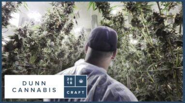 Dunn Cannabis in Abbotsford, BC