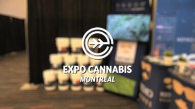 Montreal Cannabis Expo Walk Around