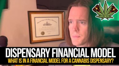 Dispensary Financial Model | What is in a financial model for a cannabis dispensary?