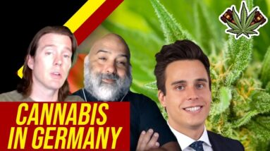 Is Weed Legal in Germany?   Cannabis in Germany