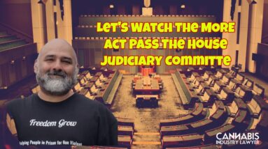 Let's Watch The MORE Act Pass The House Judiciary Committe