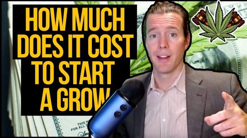 How much does it cost to start a licensed cannabis grow operation? Startup cannabis grow costs